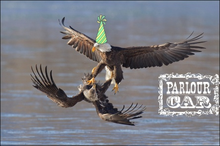 eagle party