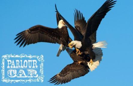 eaglessss
