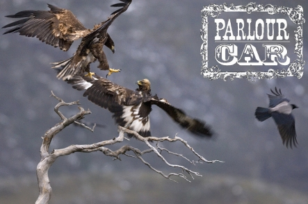 Eagle 10:3:13